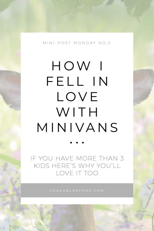 Mini-Van-Love